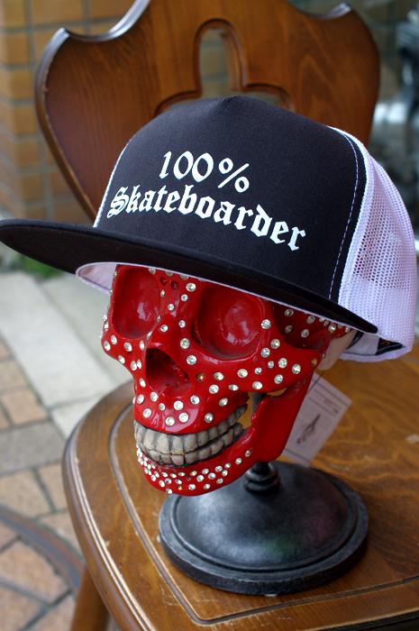 100% SKATEBOARDER LOGO MESH CAP